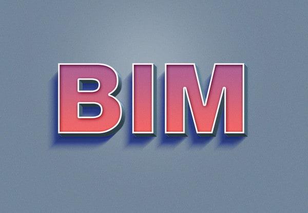 bim_text2